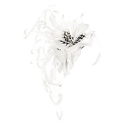 Jacques Vert - Spot trio flower feather fascinator