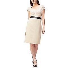 Precis - Petite lace mix textured dress
