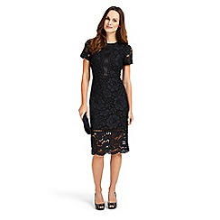 Phase Eight - Darena lace dress