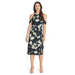 Phase Eight - Multi-coloured kendra floral dress