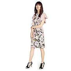 Phase Eight - Rose and Quartz livvy dress