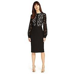 Phase Eight - Black Eviana lace sleeves dress