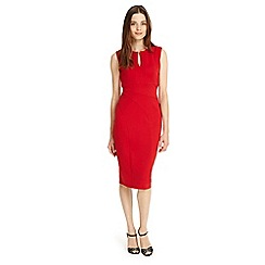Phase Eight - Naomi notch neck dress