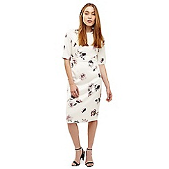 Phase Eight - Cream olga rose print dress