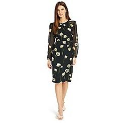 Phase Eight - Black sorina printed floral dress