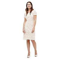 Phase Eight - Tatiana embroidered dress