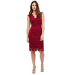 Phase Eight - Petals lace dress