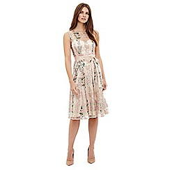 Phase Eight - Multi-coloured fodula embroidered dress