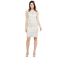 Phase Eight - Natural ally lace layered dress