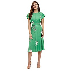 Phase Eight - Green beatrix floral printed dress