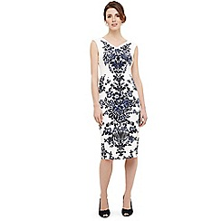 Phase Eight - Whitney placement print dress