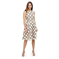 Phase Eight - Natural hayley spot dress