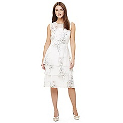 Phase Eight - Cream luca floral printed dress