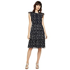 Phase Eight - Navy and ivory bea embroidered daisy dress