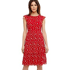 Phase Eight - Red bea embroidered daisy tiered dress