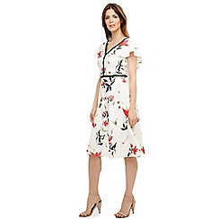 Phase Eight - Cream caylana poppy floral dress