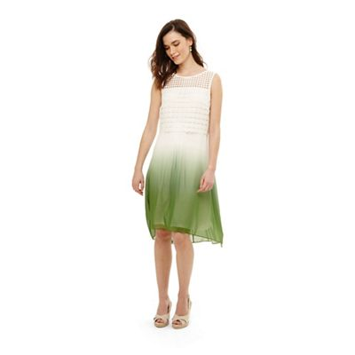 Phase Eight   Green Dorothy Dip Dye Dress by Phase Eight