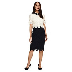 Phase Eight - Blue mandy layered lace dress