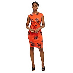 Phase Eight - Orange rafaelo print dress
