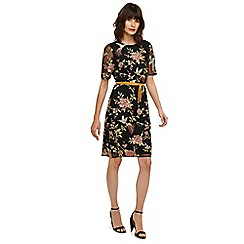Phase Eight - Multicoloured farryn embroidered dress