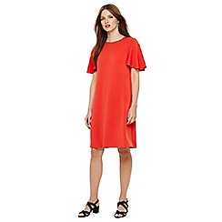 Phase Eight - Red sari sueded ponte dress