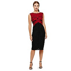 Phase Eight - Black and Scarlet countess tapework dress
