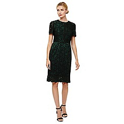 Phase Eight - Green jessie lace dress