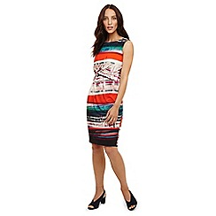 Phase Eight - Multicoloured margo may print dress