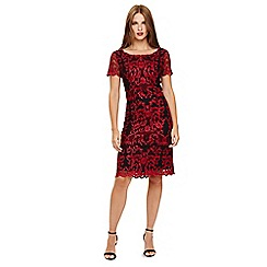 Phase Eight - Black and Scarlet tatiana embroidered dress