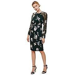 Phase Eight - Geen forest abrianna print dress