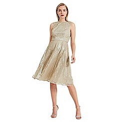 Phase Eight - Metallic Imani sequin embroidered flower dress
