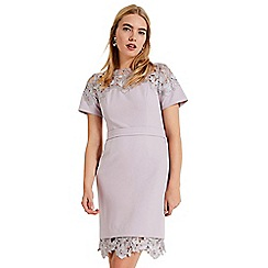 Phase Eight - Purple Debora guipure lace dress