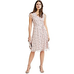 Phase Eight - Dusty rose Leilani spot tulle dress