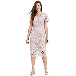 Phase Eight - Dusty rose Trinity corded lace dress