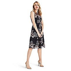 Phase Eight - Multicoloured Audrina embroidered fit & flare dress