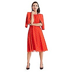 Phase Eight - Red Fernanda spot dress