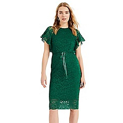 Phase Eight - Green Ninette Lace Frill Sleeve Dress