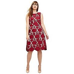 Studio 8 - Sizes 12-26 Berry melody dress