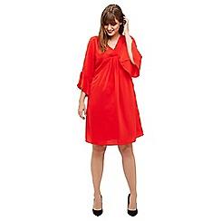 Studio 8 - Sizes 12-26 Poppy betty dress
