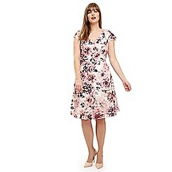 Studio 8 - Sizes 12-26 Pink multi-coloured joselyn printed lace dress