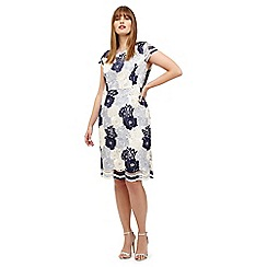 Studio 8 - Sizes 12-26 Blue and ivory megan lace dress