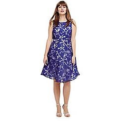 Studio 8 - Sizes 12-26 Blue kew dress