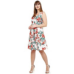 Studio 8 - Sizes 12-26 White ivanna floral dress