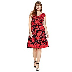 Studio 8 - Sizes 14-26 Black and Red ottoline tapework dress
