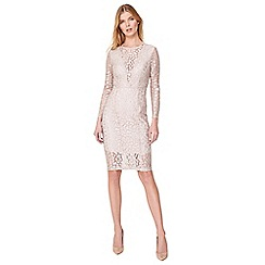 Damsel in a dress - Champagne eira animal lace dress