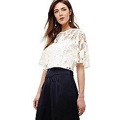 e8128834787640 Short sleeves - cream - Phase Eight - Tops - Women   Debenhams