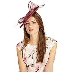 Phase Eight - Pink allegra bow back disc fascinator