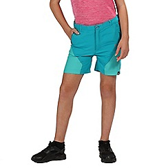 Regatta - Blue sorcer mountain shorts