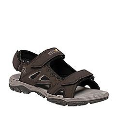 Regatta - Grey Holcombe vent sandals