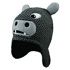 Dare 2B - Grey kids 'Look Out' beanie